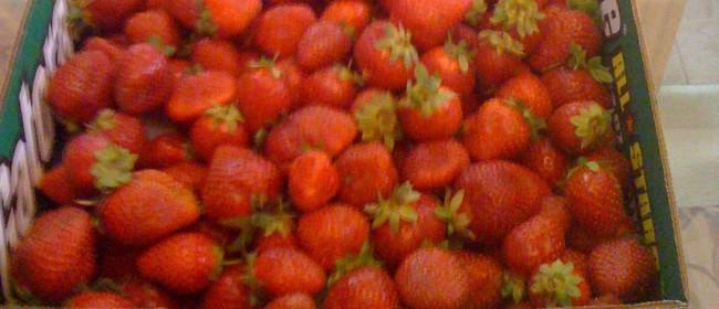 Salad With Strawberry Balsamic Vinaigrette
